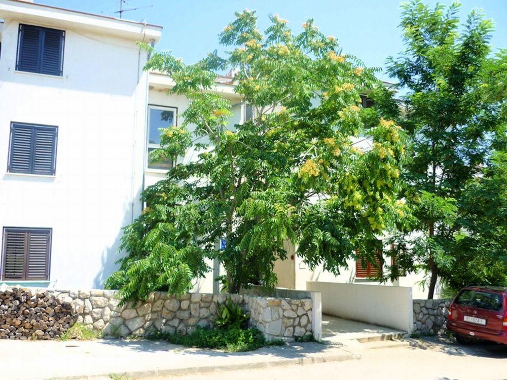 Apartmány 1355-855
