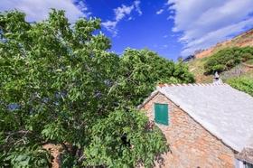 Blízké okolí domu je zastíněno stromy