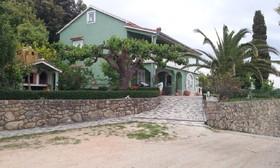 Dům je obklopen zelení