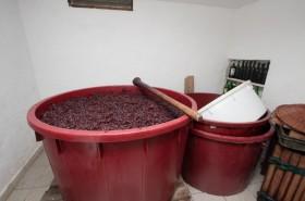 Príprava vína