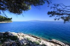 Výhled na moře ze stínu borovic