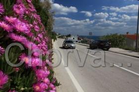 Jarní silnice na Pagu