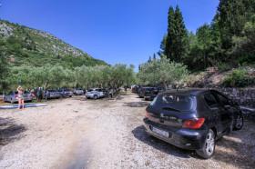 Párkování ve stínu olivovníku