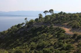 Makadamová cesta do zátoky